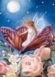 Fairy On Butterfly