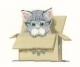 HC1249-    Cat in Box     Little Darlings by Peter Underhill
