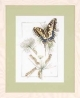 From Caterpillar to Butterfly by Marjolein Bastin - (KIT)