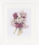Amaryllis Flower by Marjolein Bastin - (KIT)