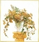 Golden Bouquet - #GOK1083 Thae G.