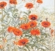 Orange Poppies - #GOK2062 Thae G.
