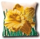Narcis Pillow - (KIT)