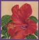 Hibiscus Pillow - (KIT)