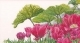 Tulips Garden Detail - #GOK432 Thae G. KIT