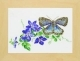 Blue Butterfly With Clematis - #GOK438 Thae G.