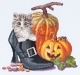 Halloween Kitten - (KIT#gok738a)